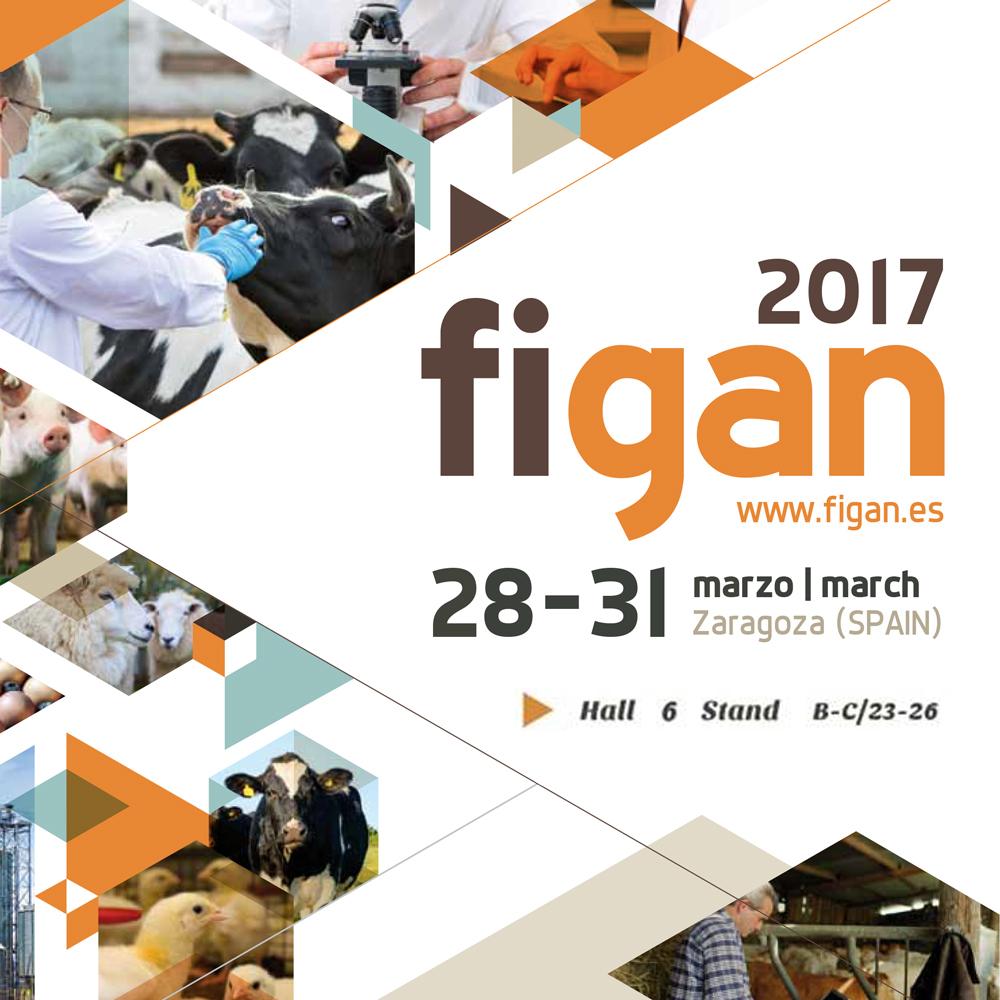 Sergal - Figan 2017